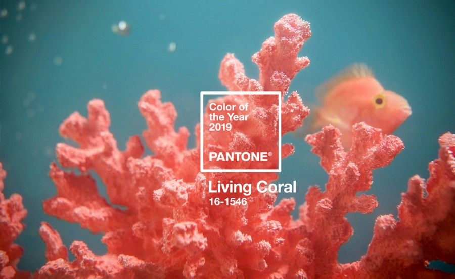 Pantone Colour of the Year 2019: 16-1546 Living Coral