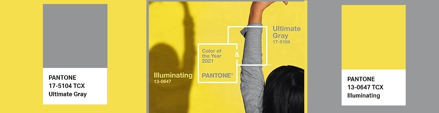 Pantone Color of the Year 2021: